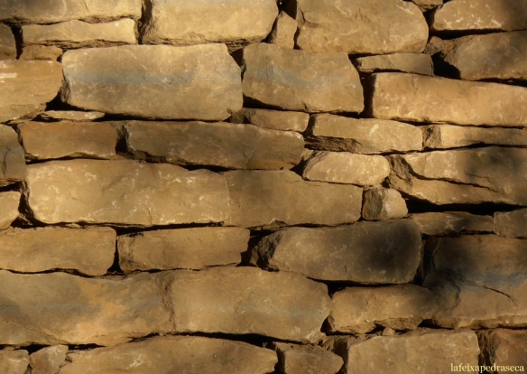 Gresos de folgueroles en un mur de sosteniment