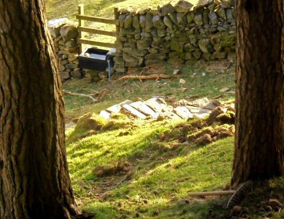 Escales fetes amb lloses de calcari i també gresos de la zona...