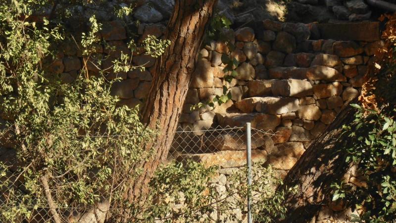escales de pedra que ens porten a la primera plataforma
