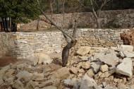Cantonada i angle recte per començar el mur principal